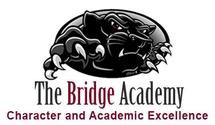 The Bridge Academy